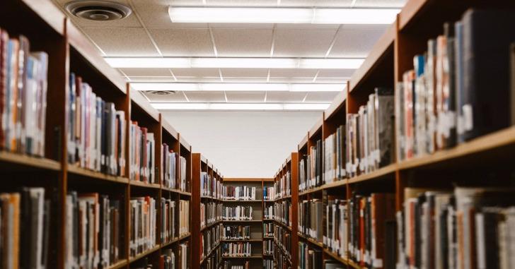 図書館の本棚と天井