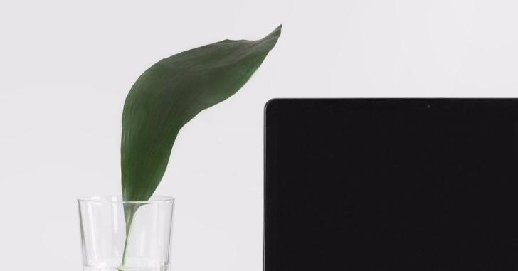 パソコンとコップに活けられた植物